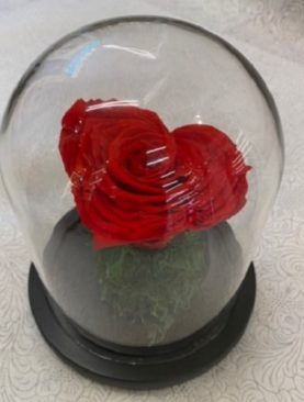 Infinite Red Heart Shaped Rose