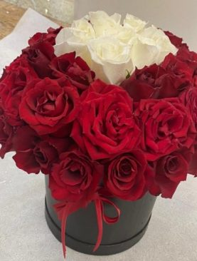 Red and White Roses in Gift Box